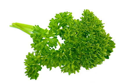 Detox food is good for you-Parsley
