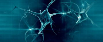 Abnormal Enzyme SOD1 Increases Amyloid Precursor Protein Activity in ALS