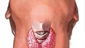 Thyroid Cancer Screening Improves with New Optical Modules