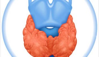 Male Thyroid Cancer Survivors at High Risk for Heart Disease