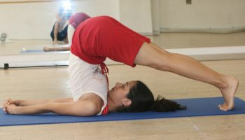 a guide to hatha yoga for beginners  the dictionary of